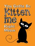 Du fick vara Kitten Me Right Meow royaltyfri illustrationer