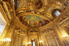 du France le Luxembourg palais Paris senat Zdjęcie Royalty Free