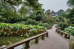 Du Fu halmtäckte stugan Chengdu Sichuan Kina Royaltyfria Bilder