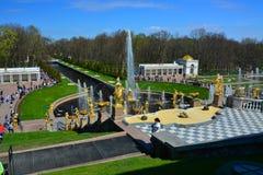 Duża Fuontain kaskada w Peterhof, St Petersburg, Rosja Obraz Royalty Free