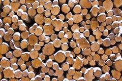 dużo drewno Fotografia Stock