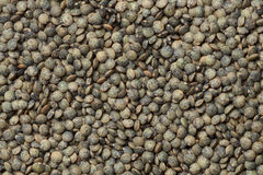 Du Puy lentils Stock Photo
