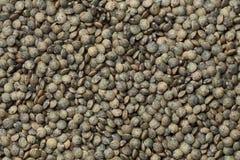 Du Puy lentils. Full frame Stock Photo