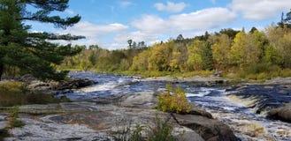 Duża rozwidlenie rzeka obraz royalty free