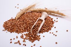 Du sarrasin est dispersé sur un fond blanc avec un scoop et un blé en bois Photographie stock libre de droits