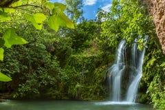Duża siklawa spada staw w lesie Obrazy Royalty Free