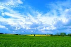 Duński wiosna krajobraz Obraz Stock