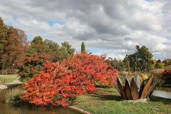 ` Du tête d de Parc ou à Lyon photos libres de droits