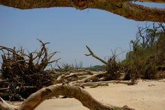Duża Talbot wyspa Fotografia Stock