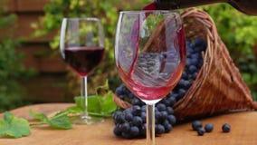 Du vin de la bouteille est versé dans un verre banque de vidéos