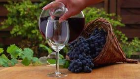 Du vin est versé dans une carafe en verre clips vidéos