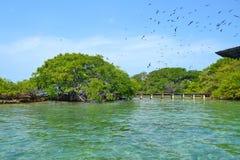 Duża wyspa Obraz Royalty Free