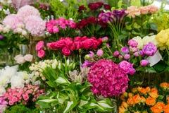 Duży asortyment w kwiatu sklepie zdjęcie royalty free