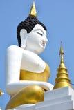 Duży Buddha niebieskie niebo i wizerunek Zdjęcia Royalty Free