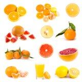 duży cytrusa kolekci owoc Obrazy Stock
