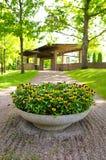 Duży garnek kwiaty Fotografia Stock