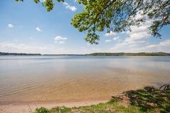 Duży jezioro za lasem Fotografia Stock