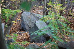 duży kamienie Zdjęcie Stock