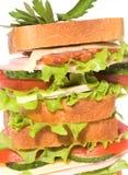 duży kanapka obrazy stock