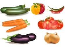 duży kolorowi grupowi dojrzali warzywa Fotografia Stock