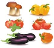 duży kolorowi grupowi warzywa Obraz Stock