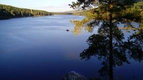Duży lasowy jezioro Fotografia Stock