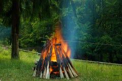 Duży ognisko w lesie Obrazy Royalty Free