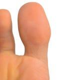 Duży palec u nogi Zdjęcia Stock