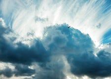Duży ptak w dramatycznym chmurnym niebie Zdjęcie Royalty Free
