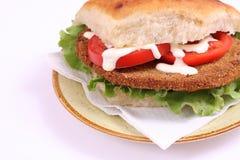 Duży sendwich obraz royalty free