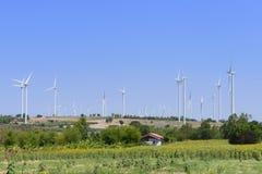 Duży silnika wiatrowego gospodarstwo rolne Obrazy Royalty Free
