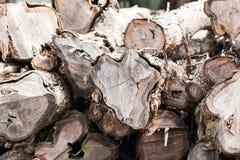 Duży stos drewno Fotografia Stock