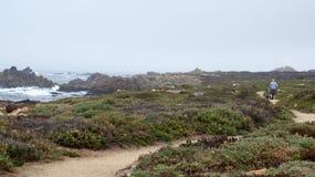 DUŻY SURA, KALIFORNIA STANY ZJEDNOCZONE, OCT, - 7, 2014: Wycieczkować ścieżkę wzdłuż Pacyficznego oceanu w Garrapata stanu parku obraz royalty free
