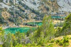 Duża Wysokość Zieleni jeziora Zdjęcie Royalty Free