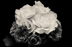 Dual roses. Black and white bouquet of roses Stock Photos