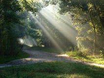Dual slant of light. Stock Photo