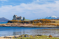 Duartkasteel, landschap van Mull eiland stock foto's