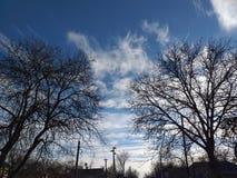 Duas árvores e nuvens leafless no céu foto de stock