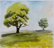 Duas árvores em uma distância Imagens de Stock Royalty Free