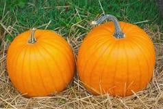 Duas abóboras alaranjadas coloridas para o Dia das Bruxas ou a ação de graças fora na palha Fotografia de Stock