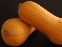 Duas abóboras da polpa de butternut Foto de Stock Royalty Free