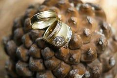 Duas alianças de casamento Fotos de Stock