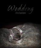 Duas alianças de casamento de prata na rocha Fotos de Stock Royalty Free