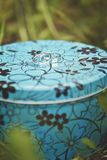 Duas alianças de casamento do ouro branco em uma caixa azul do metal na grama verde Imagem de Stock Royalty Free