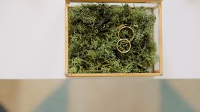 Duas alianças de casamento douradas no musgo verde na caixa de vidro do metal tiro do fundo 4K video estoque