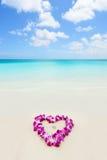 Duas alianças de casamento em leus de um coração na praia vacation Fotografia de Stock Royalty Free
