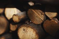 Duas alianças de casamento no sinal da infinidade em uma madeira Conceito do amor imagens de stock