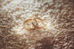 Duas alianças de casamento no velo Fotografia de Stock
