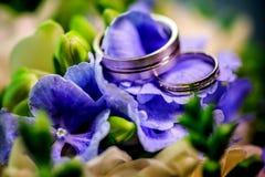Duas alianças de casamento douradas em flores roxas e em verdes do fundo Fotografia de Stock