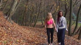 Duas amigas multiculturais do esporte estão falando durante a caminhada ao longo do parque do outono video estoque